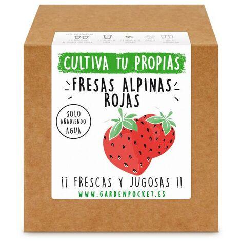 Kit siembra Fresas alpinas rojas Garden Pocket