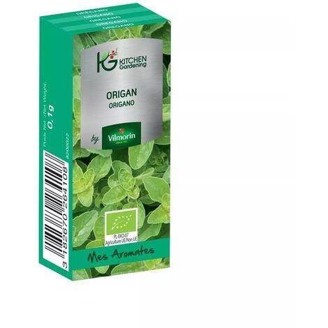 Kitchen Gardening - Origan BIO