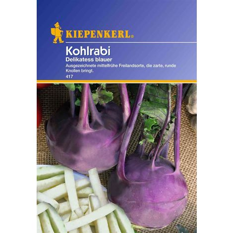 Kohlrabi Delikatess blauer