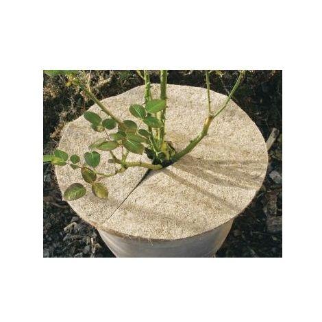 Kokos-Mulchscheiben 25cm