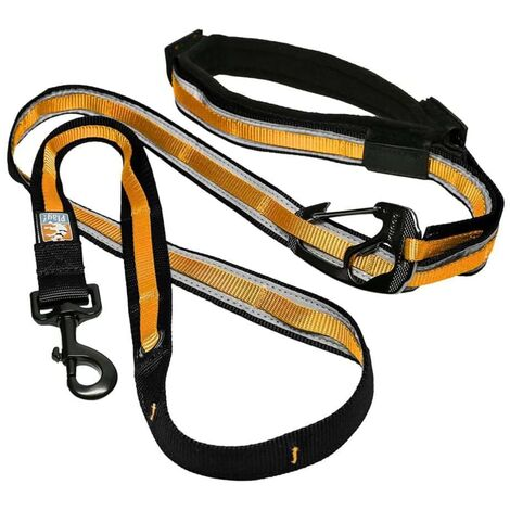 Kurgo 6-in-1 Reflective Dog Leash Quantum Black and Orange