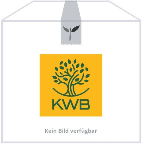 KWB Kehrschaufel aus Stahl verzinkt