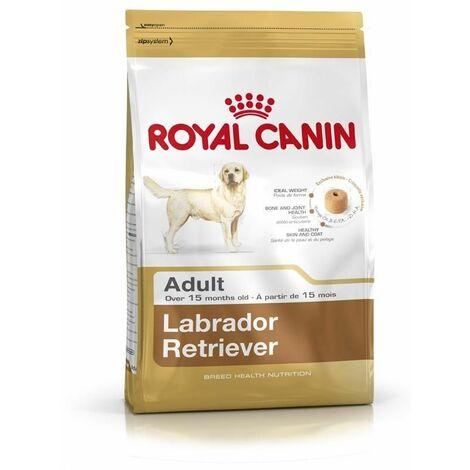 Labrador Retriever Adult - 3kg