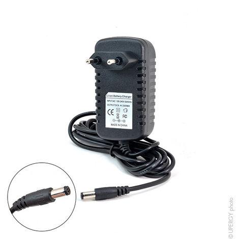 Ladegerät für LED aufladbare Handscheinwerfer 20W