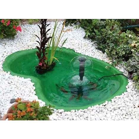 laghetto verde da giardino per tartarughe piante e pesci