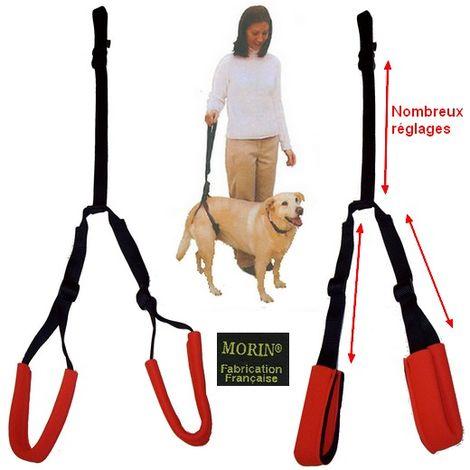 Laisse / harnais de soutien pour chien à mobilité réduite Désignation : Laisse de soutien Bottom's Up MORIN 190068