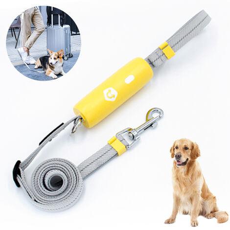 Laisse puissante pour chien, poignée confortable à déverrouillage et corde élastique anti-perte hautement réfléchissante, adaptée aux chiens de taille moyenne et petite, style 2