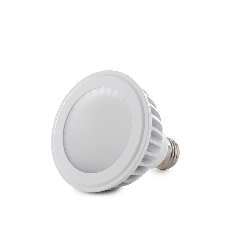 Greenice - Lampadina a LED PAR30 E27 12W 960Lm 30.000H   Bianco Freddo (HO-PAR30-12W-CW)