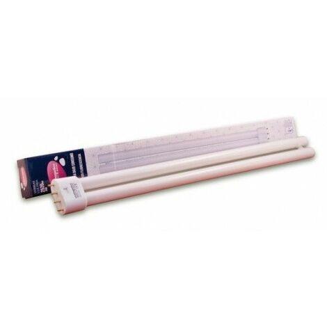 Lampara Bajo Consumo Fluoresc 4 Pins Fria 36W 6400K 1 U
