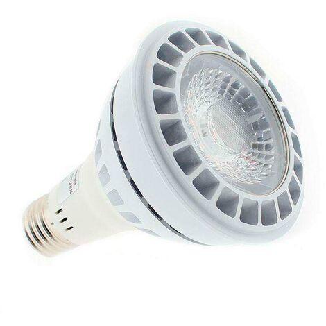 Lámpara LED CITIZEN PAR30, E27, 21W