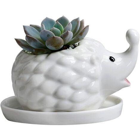 LangRay Hérisson blanc en céramique succulente Pot de fleur Pot de fleur et soucoupe décoration animale fenêtre cadre Pot de fleur(Bébé hérisson)