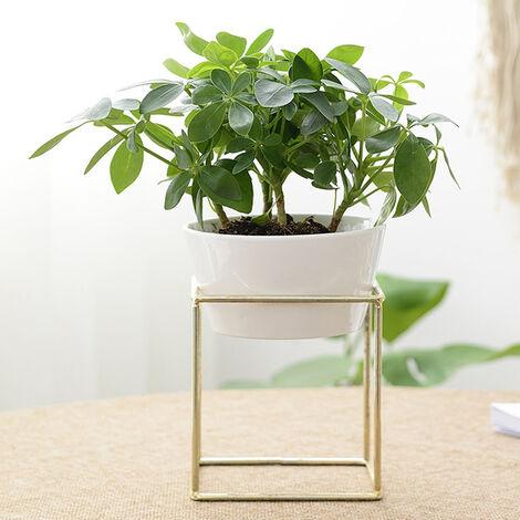 Large Plant Stand Iron and Ceramic Flower Pot Rack Set, Black