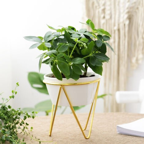 Large Plant Stand Iron and Ceramic Flower Pot Rack Set, Gold