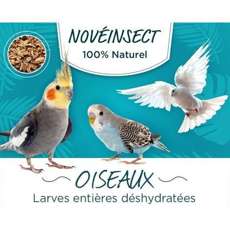 Larves entières déshydratées pour vos oiseaux pots de 90 grammes - aliment complémentaire