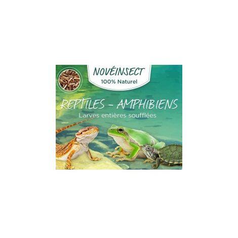 Larves entières soufflées reptiles - amphibiens pot de 50 grammes