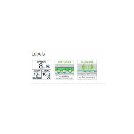 """main image of """"Lasure Tech-Wood Blanchon 5L - Plusieurs modèles disponibles"""""""