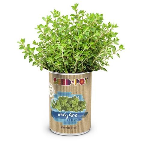 Lata De Cultivo Semillas Oregano - MAURIS - 62727