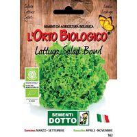 Lattuga Salad Bowl Bio