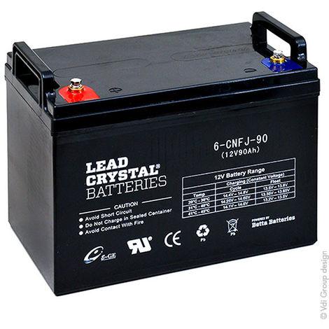 Lead Crystal - Batería de ácido cristalizado 6-CNFJ-90 12V 90Ah M6-F