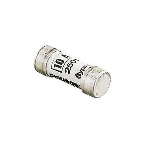 LEBENOID - Boîte de 10 fusibles GF 8X23 10A - 062410