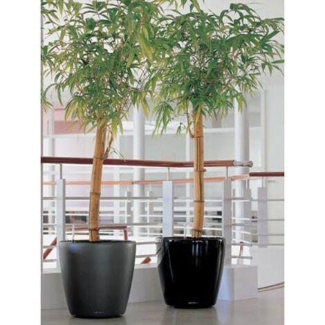 """main image of """"Lechuza Grand pot Classico premium Noir brillant Ø 60 / 56 cm"""""""
