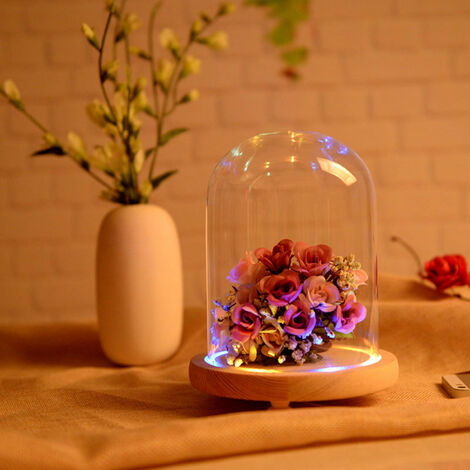 LED Lighting Wooden Base Glass Display Cloche Bell Jar Dome Vase