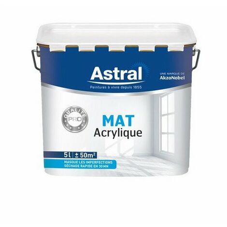 Ligne Pro Bi-Couche Acryl Mat 5l - ASTRAL