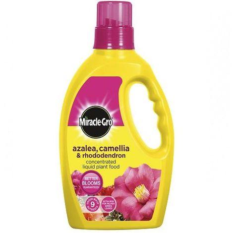 Liquid Plant Food Miracle-Gro Azalea - Camellia & Rhododendron Feed - 1 Litre