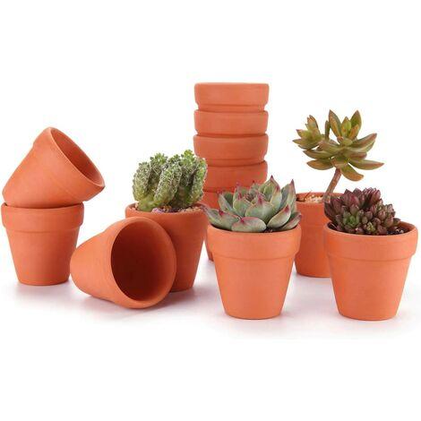 LITZEE 6.5CM 12pcs Pot de Succulent en Terre pour Cactus Fleurs Plantes, Terracotta Pot Argile pour Cactus Succulent Plantes Fleur Décoration Horticole Mariage Fête Maison Jardin et Chambre