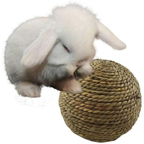 LITZEE Boule d'herbe Naturelle pour Animaux de Compagnie à mâcher pour Jouets de Nettoyage des Dents pour Petit Chat Rongeur