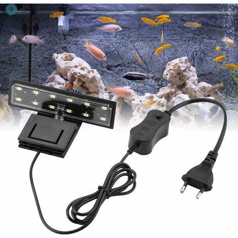 LITZEE LED iluminación para acuarios lámpara con clip de 5 W agua dulce o algas, iluminación para acuarios acuario impermeable (Luz blanca)