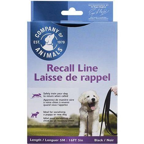 Longe recall line 10 metres