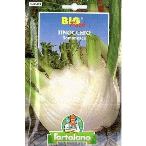 L'ortolano Finocchio Romanesco - Big Pack