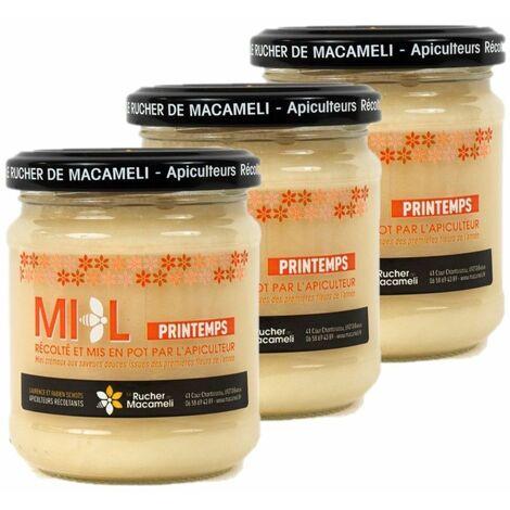 Lot 3x Miel de Printemps - Monts du Lyonnais - Rhône Alpes - Le Rucher de Macameli - pot 250g