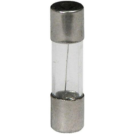Fusibles verre fusion temporisé 6 x 30 mm 0,25 Ampere 250 mA Lot de 5 fuse glass