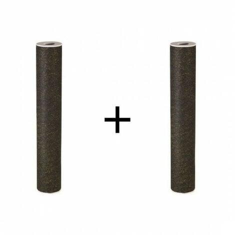 Lot de 2 filtres pour centrale Proteo 2