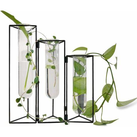 Lot de 3 vases à essai avec support en fer pour jardinières en verre hydroponiques à suspendre au mur avec support/support pour la propagation des plantes hydroponiques décoration