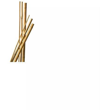 """main image of """"Lot de 9 Tuteurs Bambou 180 cm diam 6-8 mm"""""""