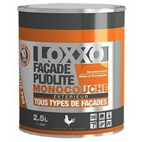 La peinture de façade pliolite ou hydropliolite