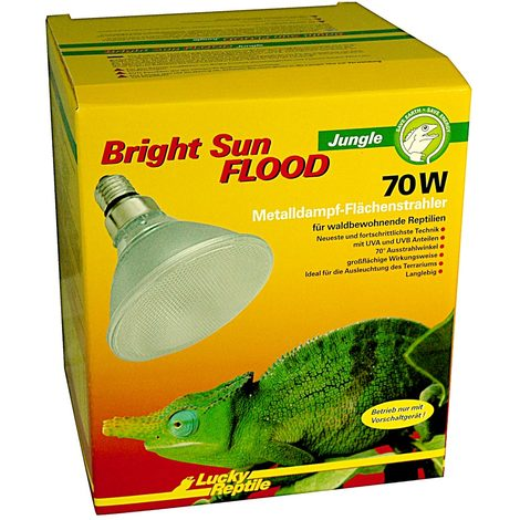 Lucky Reptile - Bright Sun FLOOD Jungle