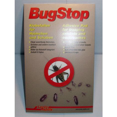 Lucky Reptile - Bug Stop - Heimchen Klebefalle