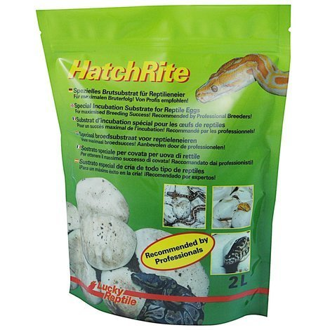 Lucky Reptile - HatchRite 2L