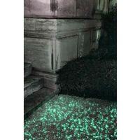 LUMINERAL GRAVILLON NOIR LUMINEUX 400GGRANULOMÉTRIE 6/10 MM