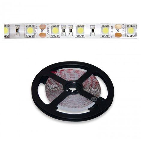 LuzConLed - Tira LED 5 metros 12V 15W por metro luz blanca - ENVÍO DESDE ESPAÑA
