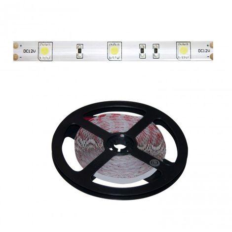 LuzConLed - Tira LED 5 metros 8W 12V DC por metro  luz blanca - ENVÍO DESDE ESPAÑA