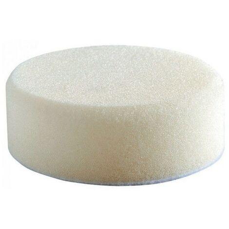 M12™ 75mm Polishing Sponges