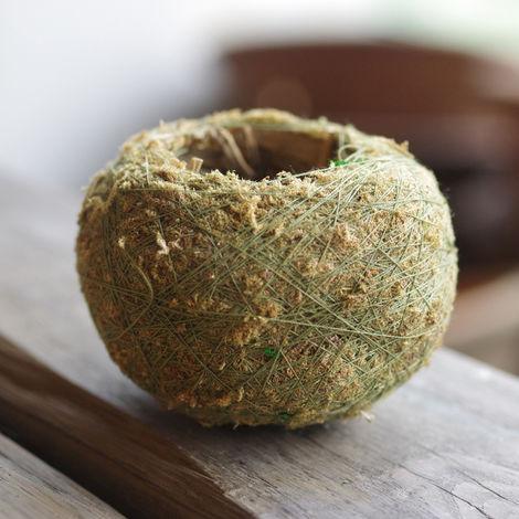 Macetero de macetas con bonsai Macetero de musgo