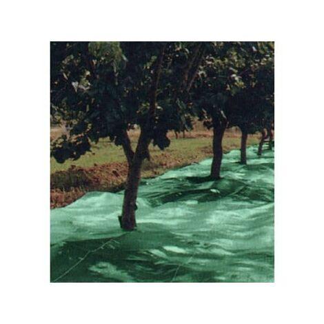 """main image of """"Malla Recolecion 4X8Mt Aceitunas Natuur Verde"""""""