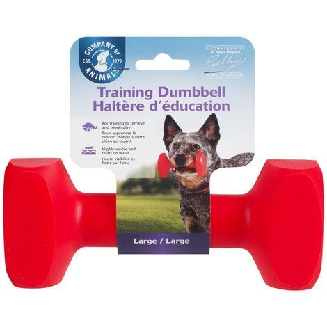 Mancuerna para adiestrar Dumbbell Training