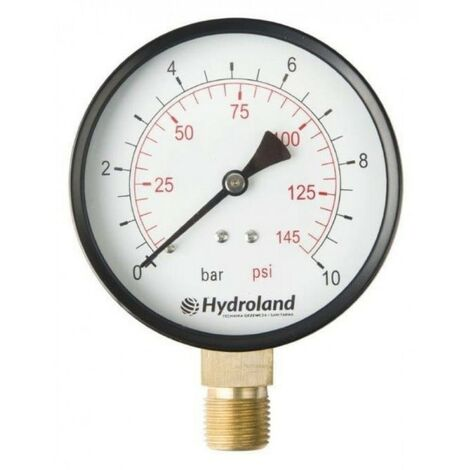 Manomètre radial latéral 0-6 bar Tube 100 mm 100,6